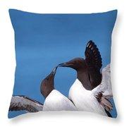 Seabird Love Throw Pillow