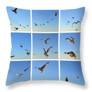Seagull Collage 2 Throw Pillow