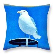 Seagull Fun Colors Throw Pillow