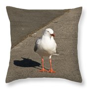 Seagull In The Summer Sun Throw Pillow