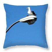 Seagull On Street Light Throw Pillow