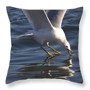 Seagull On Water Throw Pillow