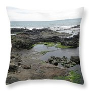 Seagull Resort Throw Pillow