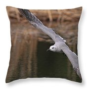 Seagull Seagull On The Move Throw Pillow