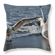 Seagull Treasures Throw Pillow