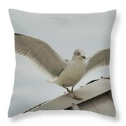 Seagull With Character Throw Pillow