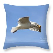 Seagull With Snail Throw Pillow