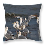 Seagulls Gathering Throw Pillow