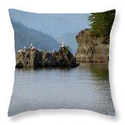 Seagulls On Rock Throw Pillow