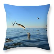 Seagulls Over Lake Michigan Throw Pillow