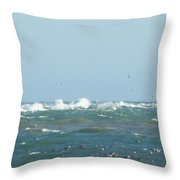 Seagulls Surf And Sandbar Throw Pillow