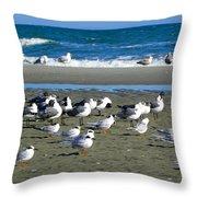 Seagulls Waiting  Throw Pillow