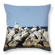 Seaguls On Boulders In Lake Erie Throw Pillow