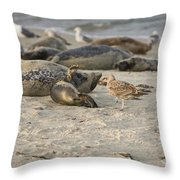 Seal 2 Throw Pillow