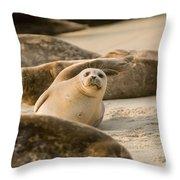 Seal 4 Throw Pillow