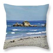 Seal Bay Beach Throw Pillow