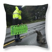 Seal Crossing Throw Pillow