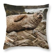 Seal Old Timers Throw Pillow