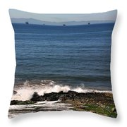 Seals Throw Pillow