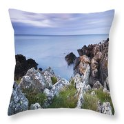 Seascape From Coast Of Clogherhead Throw Pillow