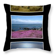 Seascape Triptych Throw Pillow