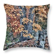 Season Change At Lost Maples Throw Pillow