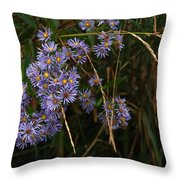 Seasonal Blues Throw Pillow