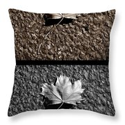 Seasons Of Change Throw Pillow by Luke Moore