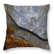 Seaweed And Rock Throw Pillow