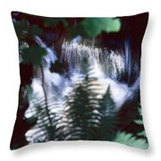 Secret Cascade Throw Pillow