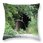 Secret Passage Way Throw Pillow