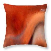 Secrets Throw Pillow by Gwyn Newcombe