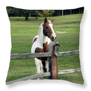 Secrets In The Field Throw Pillow