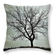 Secrets Of The Roots Throw Pillow