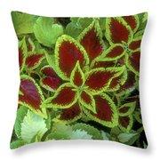 Sedona Floral Throw Pillow