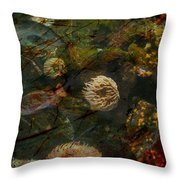 See Of Fossil Three Throw Pillow