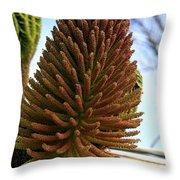 Seed Cone  Throw Pillow by Aidan Moran