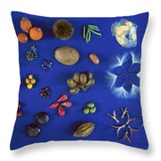 Seed Diversity, Barro Colorado Island Throw Pillow