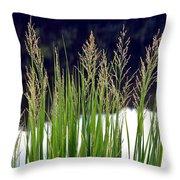 Seedy Grass Throw Pillow
