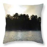 Seine River Beauty Throw Pillow