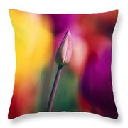 Selective Focus Tulip Flower Field Throw Pillow