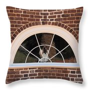 Self Portrait Reflection Throw Pillow