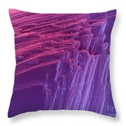 Sem Of A Diamond Throw Pillow by Ted Kinsman