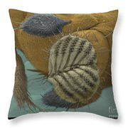 Sem Of A Fruit Fly Mouth Throw Pillow