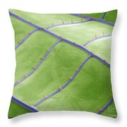 Sem Of Dragonfly Wing Throw Pillow