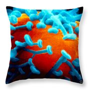 Sem Of Nerve Synapses In Aplysia Throw Pillow