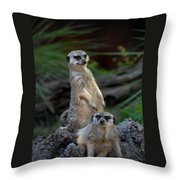 Sentry Throw Pillow by Skip Willits