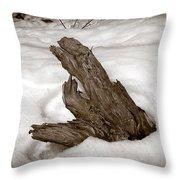 Sep34 Throw Pillow