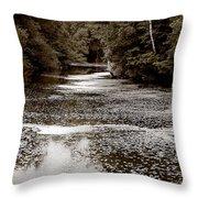 Sep56 Throw Pillow