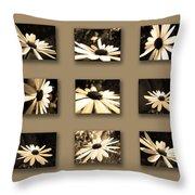 Sepia Daisy Flower Series Throw Pillow by Sumit Mehndiratta